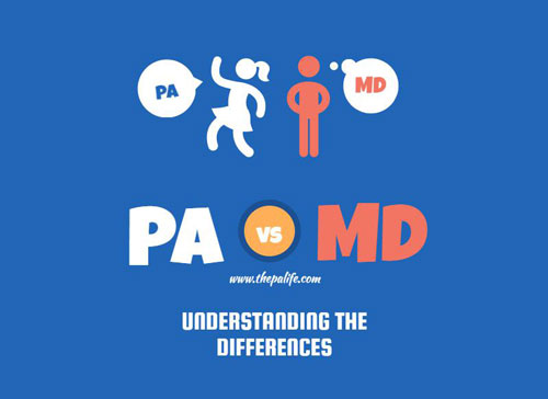 Infographic Pa Vs Md Understanding The Differences The Physician
