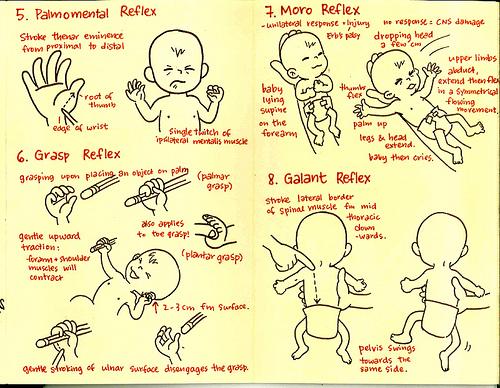 Primitive Reflexes 2