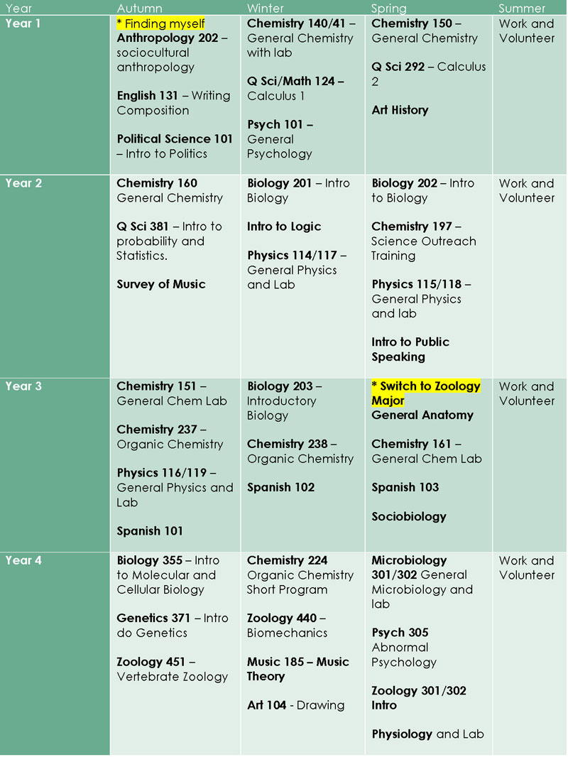 essay on schedule design