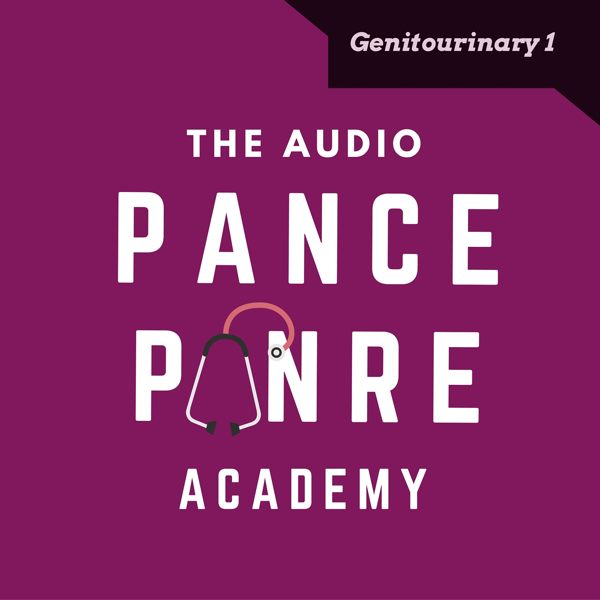 c86919cf6ff7a8 Genitourinary 1  The Audio PANCE and PANRE Podcast Topic Specific Review  Episode 35