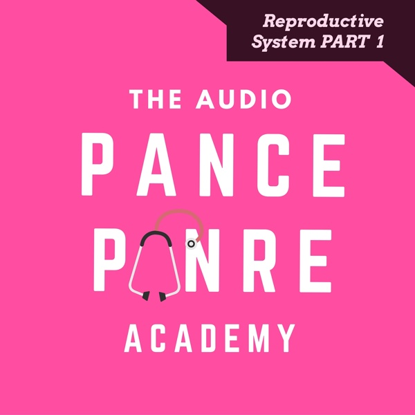 Reproductive system the audio pance and panre podcast topic reproductive system board review podcast malvernweather Images