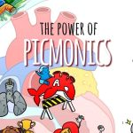 The Power of Picmonics Plus Get 20% OFF!