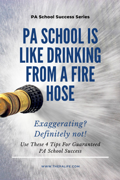 Four Tips For Guaranteed PA School Success
